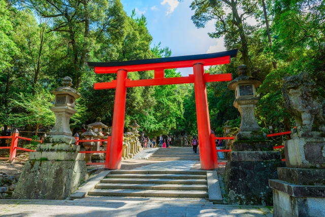 夏の神社鳥居の写真