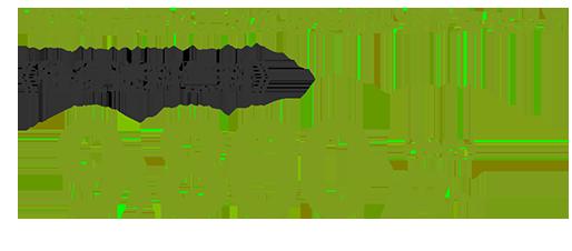 色留袖着用に必要なものが揃ったフルセットが往復送料無料で税込み¥9800から。